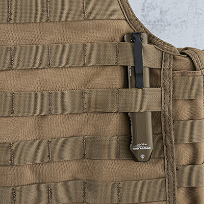 Wedge-molle-08